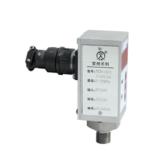 TXZS1型智能压力控制器