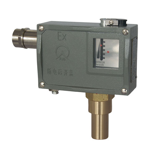 505/7D防爆压力控制器